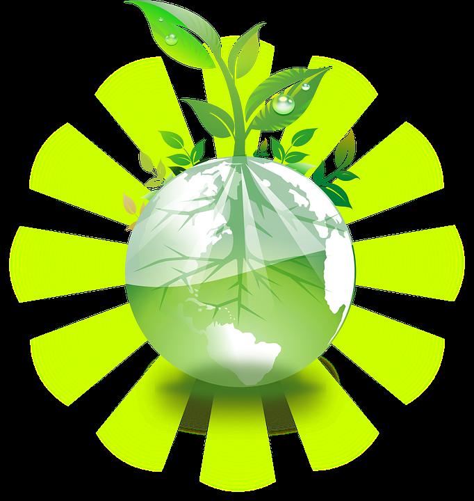Jorden, Klot, Växt, Eco, Grön, Natur, Bevara, Återvinna
